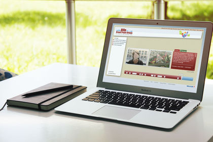 Site web Grand Projet Urbain Lille