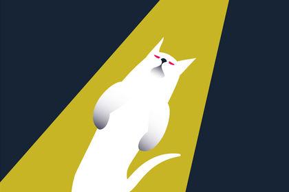 UFO Cat