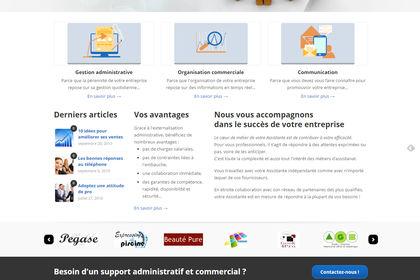 Site internet Consultants, charte graphique