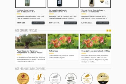 Site internet Vigneron, e-commerce