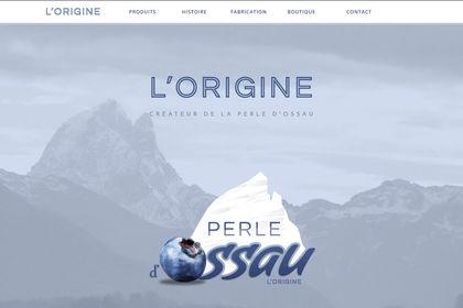 Design et développement d'un site fictif
