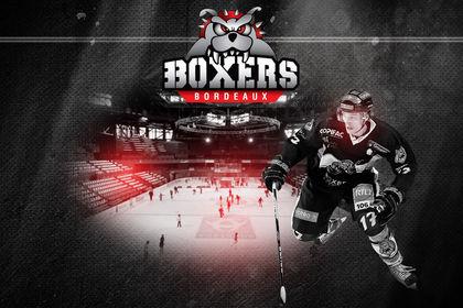 Boxers bordeaux