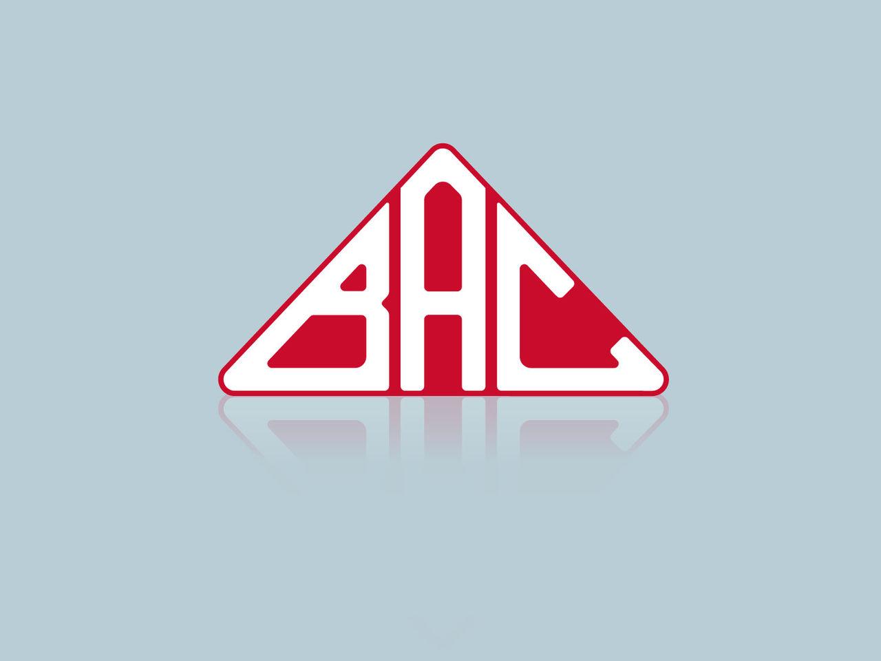 Restyling Logo Bac Valves