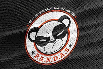 Logo / Pandas