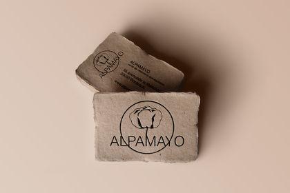 Carte de visite Alpamayo