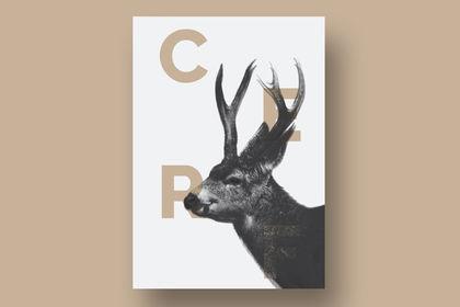 Cerf & Typo