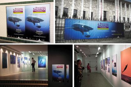 Client : Aquarium de la Porte Dorée