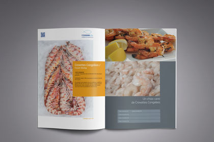 Brochure A4 / 8 pages
