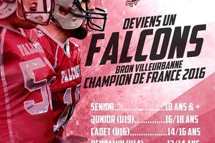 Recrutement Falcons