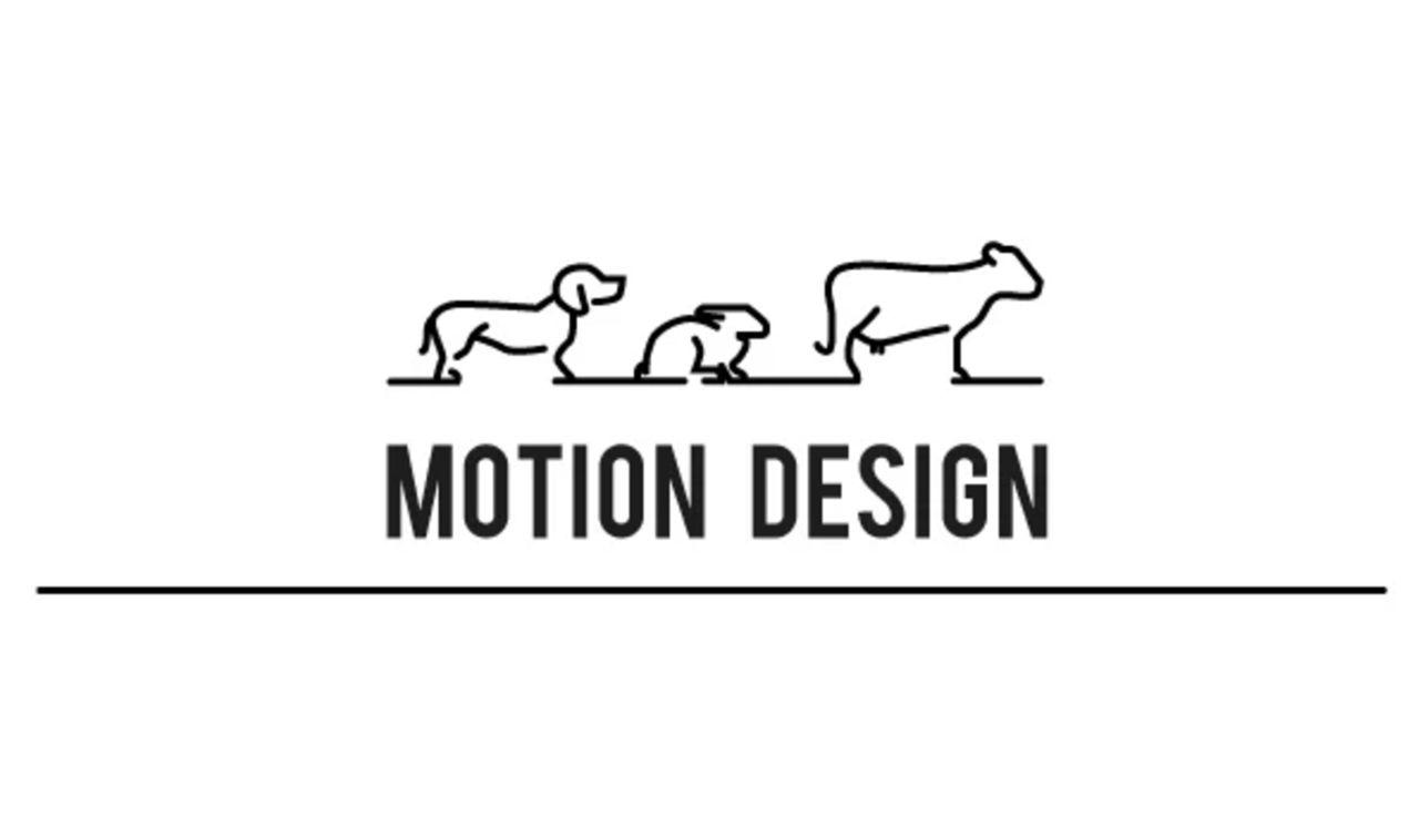 Motion design animaux souffrance