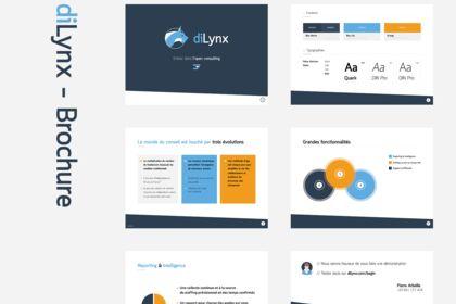 DiLynx - Brochure
