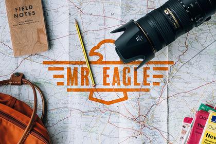Mr. Eagle (Logo)