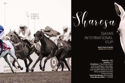 Album pour le Haras Al Shahania Stud au Qatar