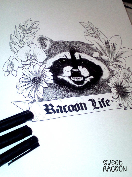 Illustration RacoonLife