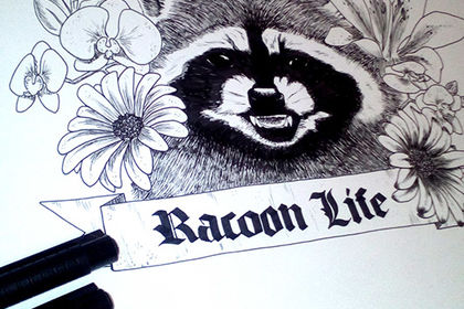 Illustration RacoonLife