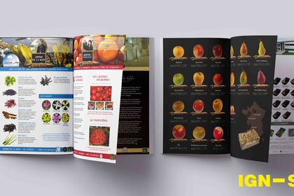 Catalogue entreprise