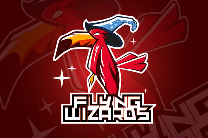 Logo Flying Wizards