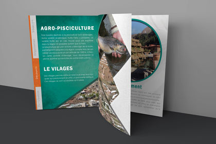Catalogue de AUROCHER