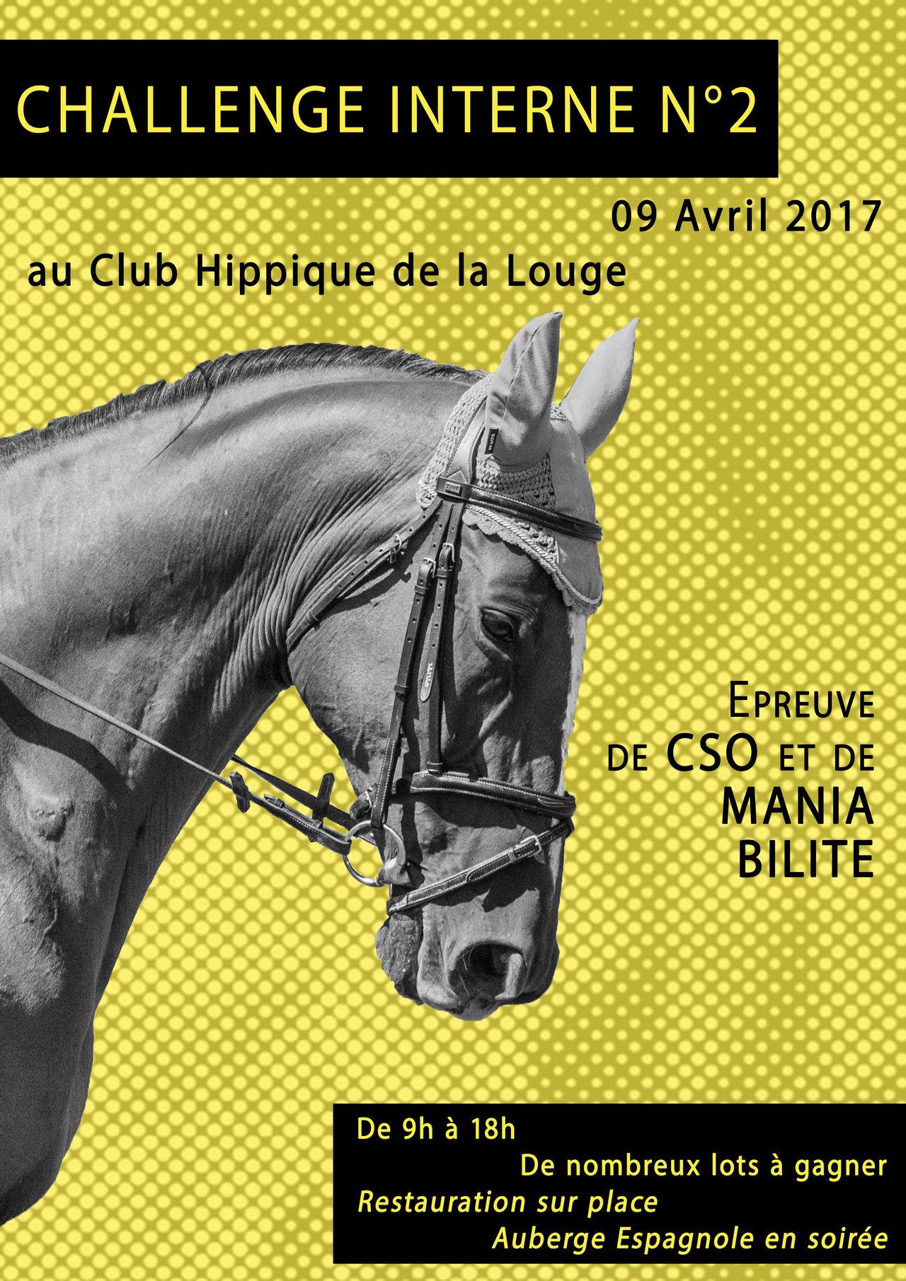 Challenge Equestre