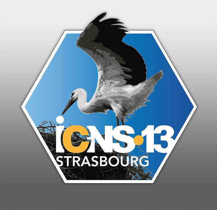 ICNS 13