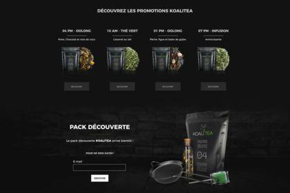 KOALITEA - Website 002