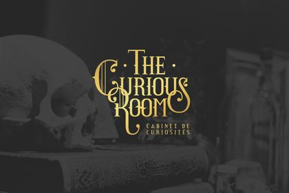 The Curious Room