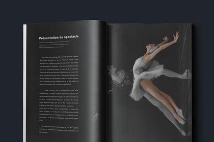 """Création des brochures """"Le Lac des Cygnes"""""""