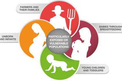 GreenPeace - infographics illustration