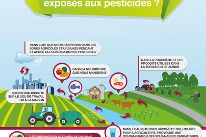 Greenpeace infographics illustration