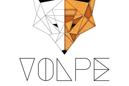 Logo de VOLPE design