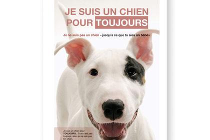 Affiche SPCA