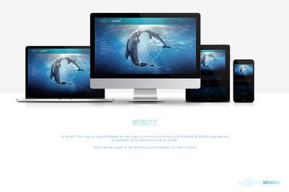 Seemers Website