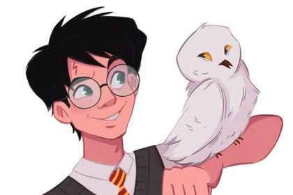 Harry et Hedwige
