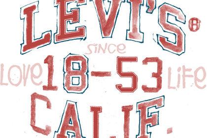 Logo tee shirt Levi's girl