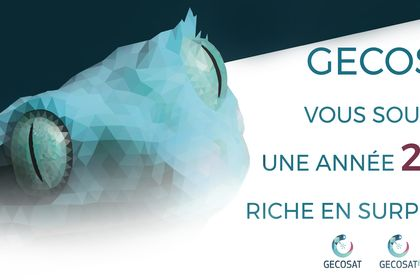 Carte de voeux pour l'entreprise Gecosat