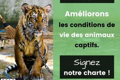 Charte Code Animal