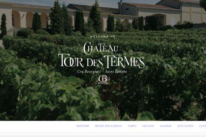 Site internet Chateau tour des termes
