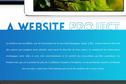 Réalisation d'un site web