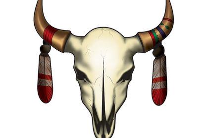Illustration   Crâne de buffle