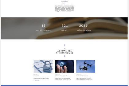 Interface de site web