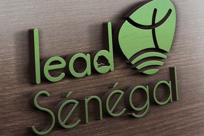 Logotype LeadSénégal