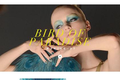 Réalisation d'une page Makeup pour Dior