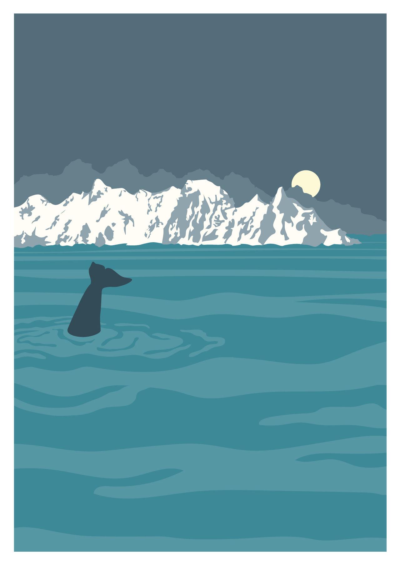 Ocean's Tale - Orca