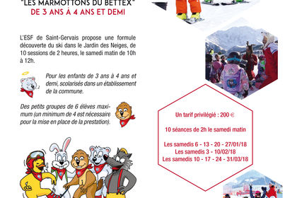 AFFICHE ESF