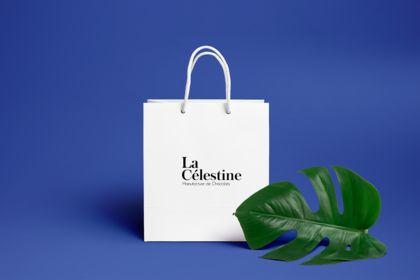 Création logo et design produit