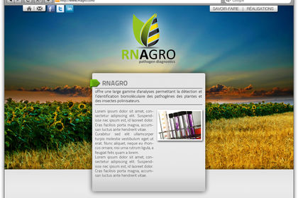 Site rn agro