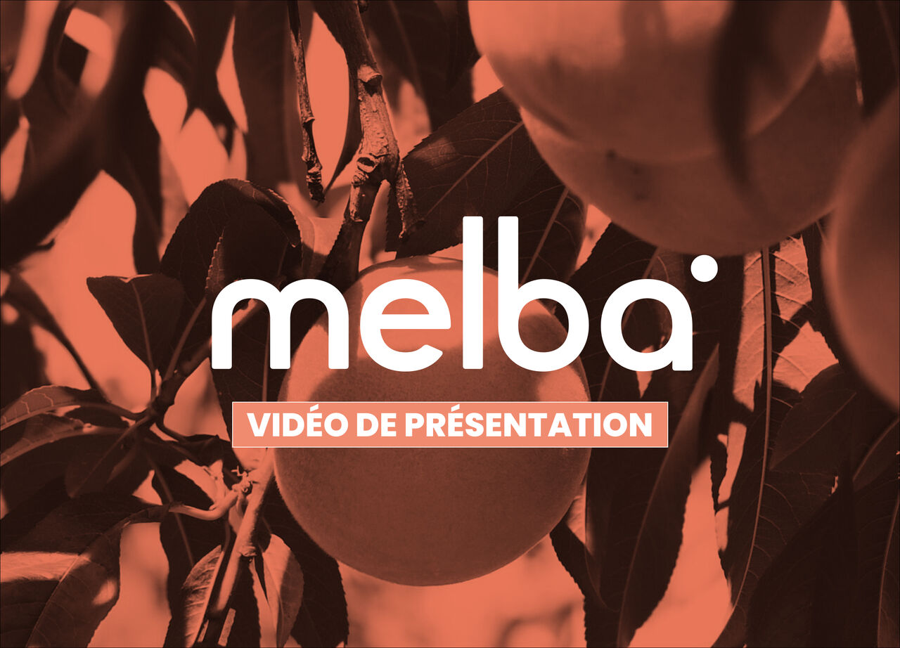 Agence Melba - Vidéo de présentation