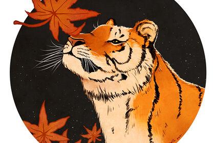 Tigre et feuilles d'érable japonais