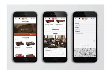 Simon Li Ecommerce Webdesign