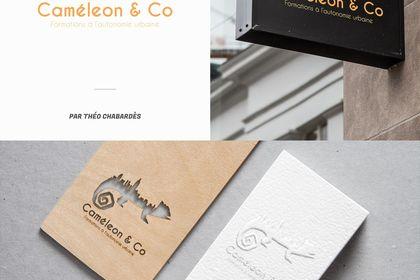 Création de logo - Caméléon & Co